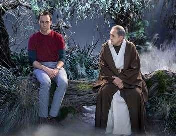 The Big Bang Theory L'héritage du professeur Proton