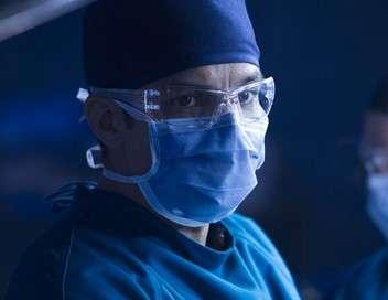 Good Doctor Ne tirez pas sur l'oiseau moqueur