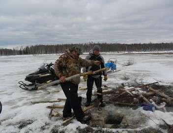 Into the Wild : Alaska