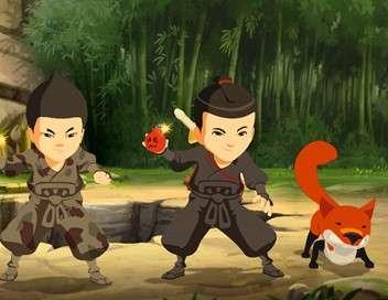 Les Mini-Ninjas