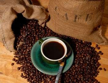 C'est pas sorcier Le café : les sorciers veillent au grain !