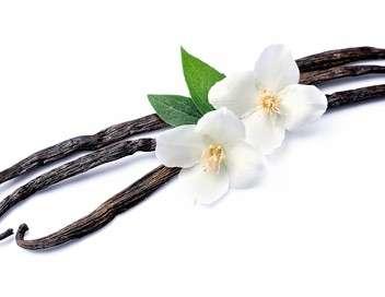 C'est pas sorcier La vanille : un goût qui vient de loin