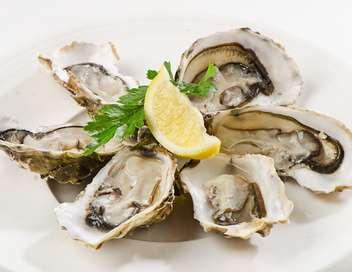 C'est pas sorcier Les huîtres, un coquillage bien élevé