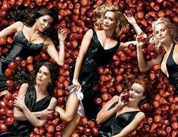Desperate Housewives Le jeu du faire semblant