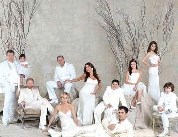 Modern Family Le ciboulot de la promo