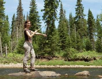 Xenius Aventure dans les forêts canadiennes