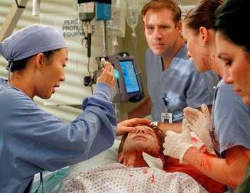 Grey's Anatomy ... Et sa bannière