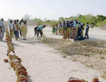 Lutter contre la sécheresse : des réponses innovantes
