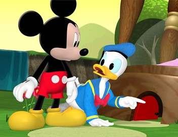 La maison de Mickey Donald, chasseur de sable