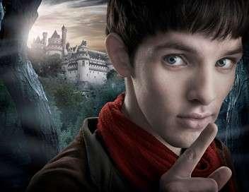 Merlin Disparition