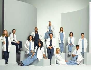 Grey's Anatomy Liés à jamais