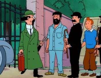 Les aventures de Tintin L'affaire Tournesol