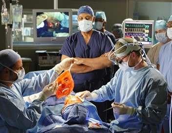 Grey's Anatomy À chacun son drame