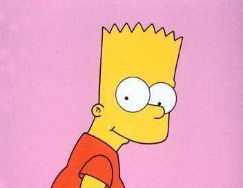 Les Simpson Simpson Horror Show V
