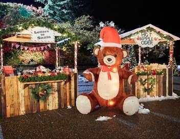 Un Noël à Springdale