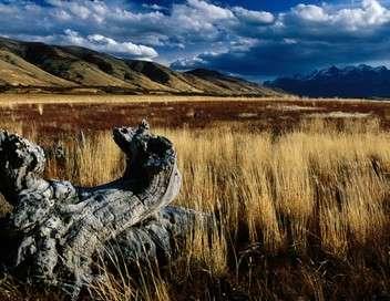 Ushuaïa nature À la découverte de l'ultime espérance