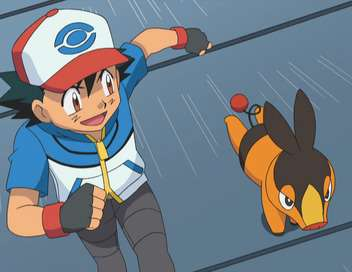 Pokémon : Ligue indigo La montagne de l'évolution