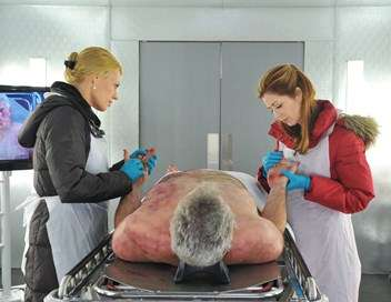 Body of Proof De sang-froid