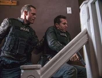Chicago Police Department Un témoin très spécial