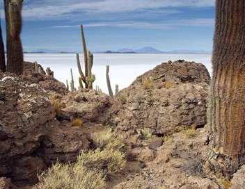 Les Andes, nature extrême