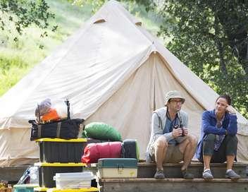 Camping Debout toute la nuit