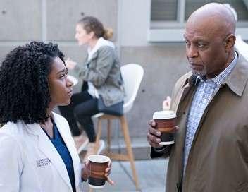 Grey's Anatomy Premières amours