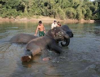 Thaïlande, le pouvoir de l'eau