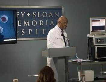Grey's Anatomy Ça plane pour moi