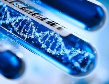 Complément d'enquête ADN, héritages : recherche proches désespérément