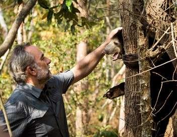 Le messager : Antoine Duléry Sur la terre des ours au Cambodge
