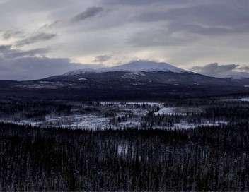 L'appel du Grand Nord