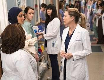 Grey's Anatomy Les survivantes
