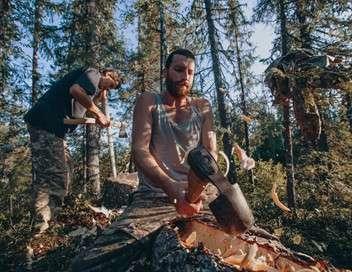 Vivre la forêt D'un monde à l'autre
