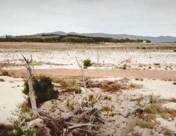 Afrique du Sud : Le Cap à sec