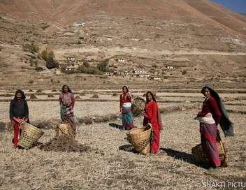 Népal, la voix des femmes