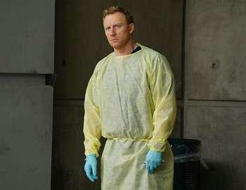 Grey's Anatomy Cause perdue