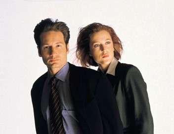 X-Files Schizogonie
