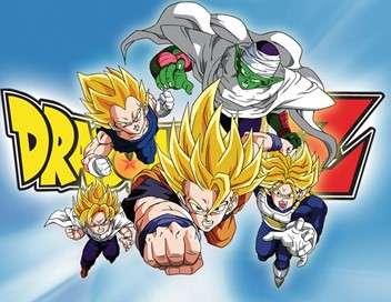 Dragon Ball Z Pour une victoire définitive