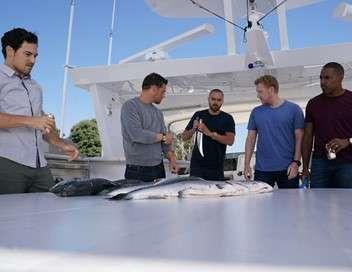 Grey's Anatomy Tous dans le même bateau