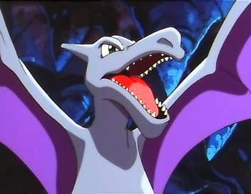 Pokémon : XY Les héros de la forêt !