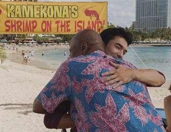 Hawaii 5-0 He waha kou o ka he e