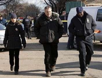 New York, section criminelle Bain de vengeance