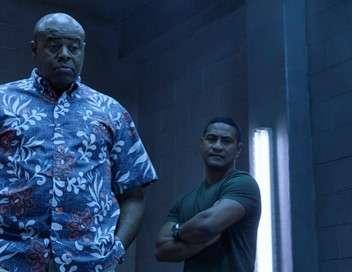 Hawaii 5-0 Ai no i ka 'ape he mane'o no ko ka nuku
