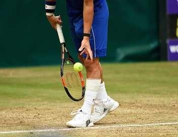 Tournoi ATP de Halle