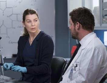 Grey's Anatomy Filiation