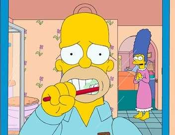 Les Simpson On ne vit qu'une fois