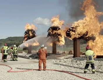 Le monde de Jamy Sécheresse et incendies : les super-pouvoirs de nos forêts !