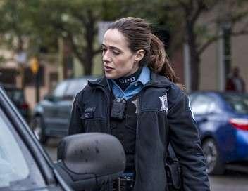 Chicago Police Department Entre les mailles du filet