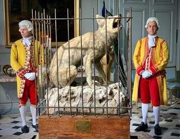 Secrets d'Histoire Louis XV et la bête du Gévaudan