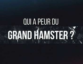 Qui a peur du grand hamster ?